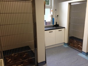 walk in kennels