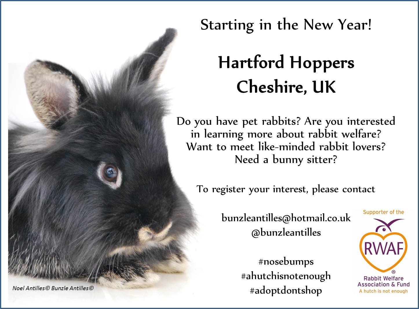 Hartford Hoppers Launch